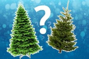 Какую елку купить?